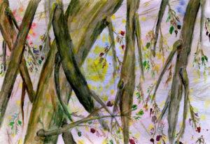 Дерево сновидений, ветвь